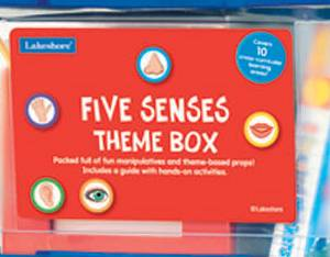 FIVE SENSE THEME BOX