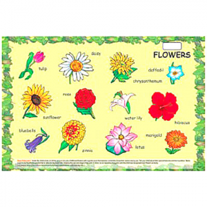 PLAY AND LEARN PUZZLES – FLOWERS